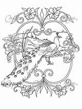 Peacock Coloring Adults Adult Colouring Feather Animal Drawing Printable Sheets Step Masja Mandala Animals Peacocks Stencils Google Doodle Pour Getdrawings sketch template