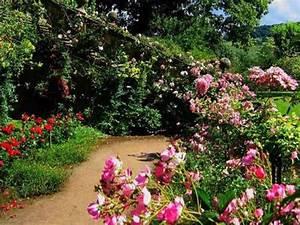 Comment Obtenir Un Prêt Caf : comment avoir un beau jardin sans trop d 39 efforts biba ~ Gottalentnigeria.com Avis de Voitures