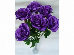 Single Purple Rose Pictures to Pin on Pinterest - PinsDaddy