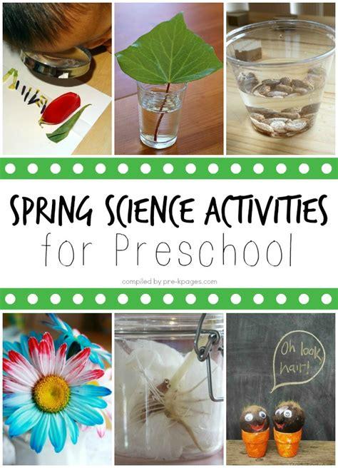 spring science activities  preschoolers