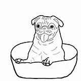 Coloring Boxer Dog Bowl Sitting Puppy Drawing Down Template Getdrawings Sketch Templates Tocolor sketch template