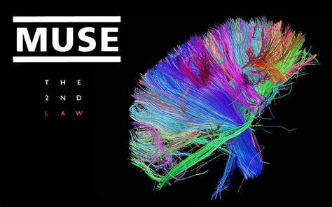Muse Wallpaper And Background Image