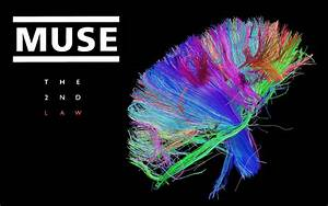 The 2nd Law Wallpapers - Muse Wallpaper (32291104) - Fanpop