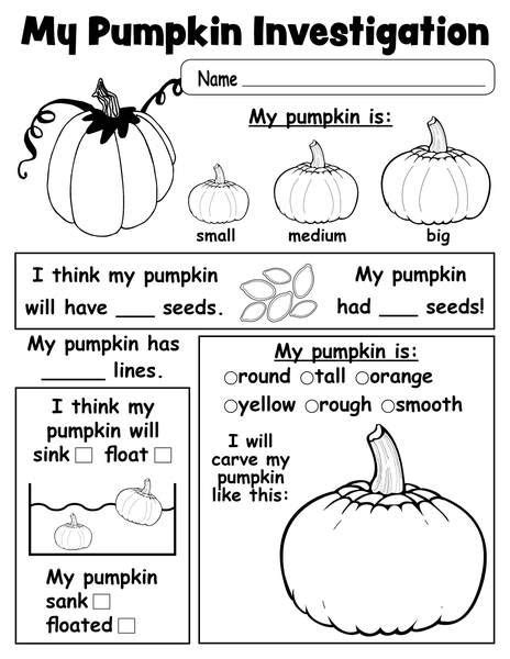 pumpkin investigation worksheet printable fall