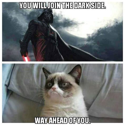 May The Fourth Be With You All The Memes You Need To See