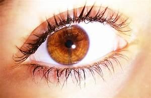 Key to perfect thin eyelashes.. With NO EYELASH CURLER Use ...