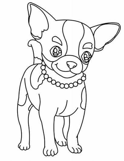 Chihuahua Coloring Pages Dog Drawing Necklace Chiwawa