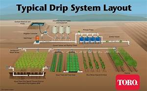 Subsurface Drip Irrigation  Sdi