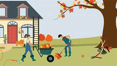 Fall Tips Safety Yard Leaves Safe Maintenance