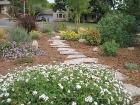 California Drought Tolerant Landscaping Ideas
