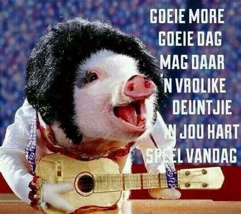 316 best about goeie more on afrikaans morning thursday and