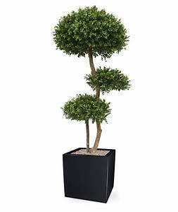 Fausse Plante Verte : fausse plante verte exterieur l 39 atelier des fleurs ~ Teatrodelosmanantiales.com Idées de Décoration