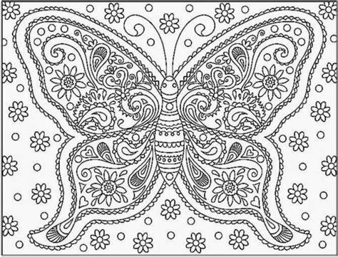 attractive butterfly coloring pages   fun