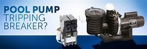 Pool Pump Trips Breaker    Gfci  U2013 Inyopools Com  U2013 Diy Resources