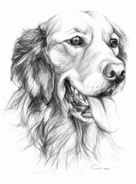 Items Similar To Golden Retriever Pet Portrait Original
