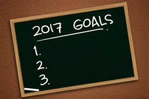 2017 New Year's Resolution Goals