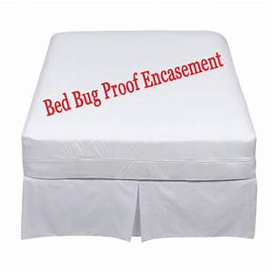 Bed bugs toronto toronto bed bugs help bed bug mattress for Buy bed bug mattress cover