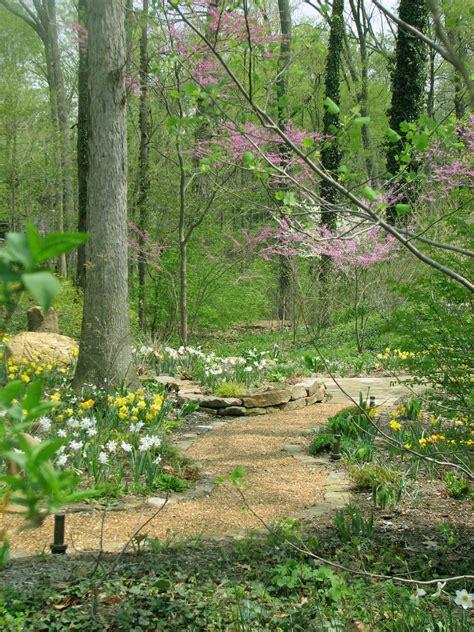 wooded garden woodland gardens indianapolis
