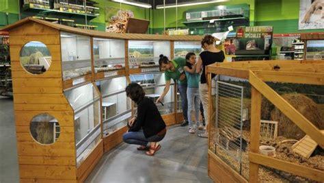 maxi zoo siege social maxi zoo complète sa meute de magasins bref eco