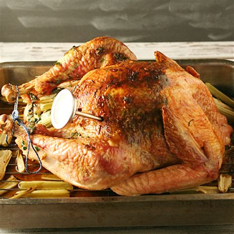 injecting turkey flavor injected herb roasted turkey yours and mine are ours