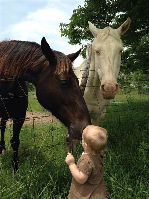 horse quarter bit valentine horses aggers jessica courtesy