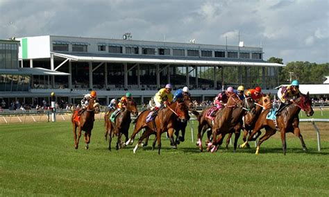 weekend handicapping reports horse racing news