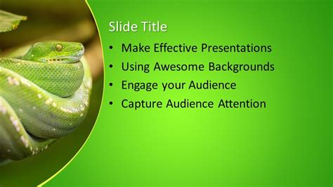 snake powerpoint template  powerpoint templates