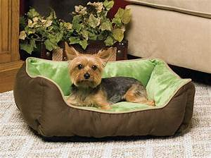 Look here for comfortable small dog beds for Dog beds small breeds