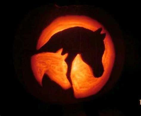 Pumpkin Masters Carving Templates by Horse Pumpkin Creative Ideas Pinterest