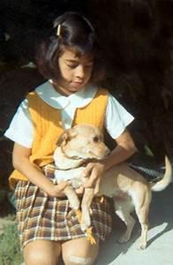 Go Dog Go Dog 3 Week Board & Train - About Olga Browning ...