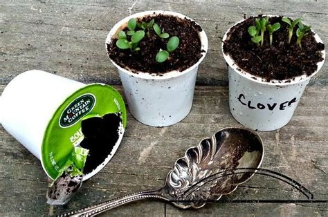 When you buy coffee pods what you get is coffee inside a filter paper, on the same principle as tea bags. 33 Genius Ways To Reuse Your K-Cups