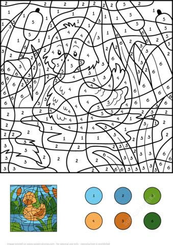 Duck Color by Number Free Printable Coloring Pages