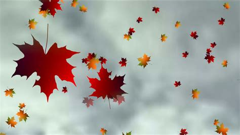 Autumn Tree Leaf Fall Animated Wallpaper - animated autumn leaves falling motion background