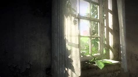 The Last Of Us Animated Wallpaper - last of us window pane live wallpaper hd