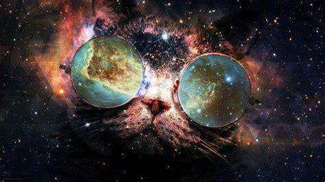 cat glasses wallpapers hd desktop  mobile backgrounds