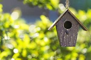 Nistkästen Selber Bauen : nistk sten selber bauen mit einfachen holzplatten zum selber bauen ~ Eleganceandgraceweddings.com Haus und Dekorationen