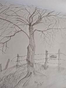 Beautiful Pencil Art Nature Drawing - Great Drawing