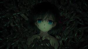 sakura matou type moon wiki fandom powered  wikia