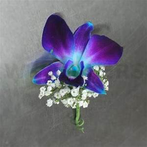 orchid boutonniere | Blue Orchid Boutonniere - W Flowers ...