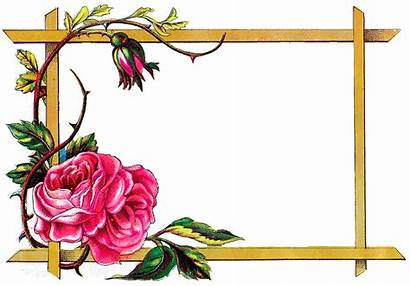 Border Frame Floral Rose Clipart Flower Flowers
