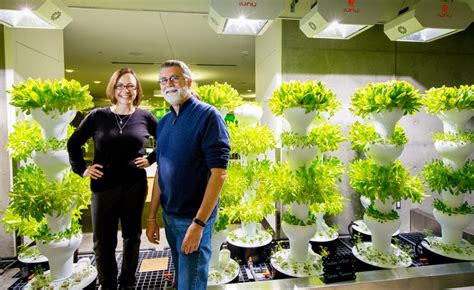 How Does Your Garden Grow Lab by How Does Your Garden Grow Lab Garden Ftempo