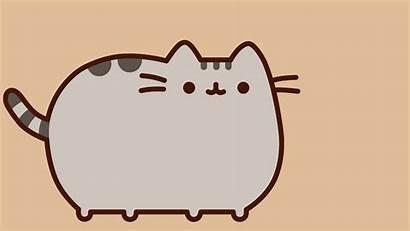 Pusheen Cat Desktop Pusheenthecat Backgrounds Wallpapers
