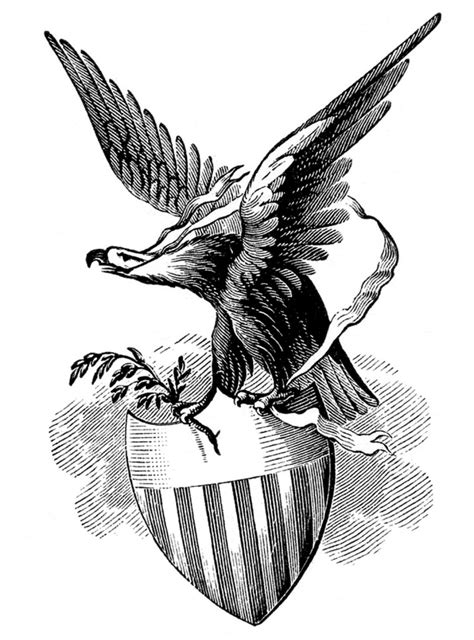 10 Bald Eagle Clip Art Images! - The Graphics Fairy