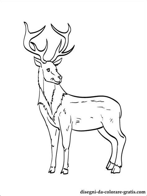 disegni renna da colorare disegni da colorare gratis