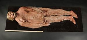 COCOON (1985) - Human Body Skin - Current price: $600