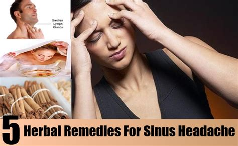5 Best Herbal Remedies For Sinus Headache Dependable Flooring Products Hardwood Install On Stairs Metropolitan Floors Eagan Mn Ark Retailers Discount Stores Fort Worth Tx Cheap Wood Floor Panels Laminate From Home Depot Reviews Asian Acacia