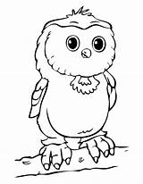 Owl Coloring Spectacled 1230px 21kb Drawings sketch template