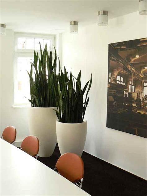 Dekoration für Wohnung & Wohnzimmer aus Erfurt (Thüringen