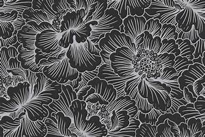 Photos: Black And White Flower Prints, - Drawings Art Gallery