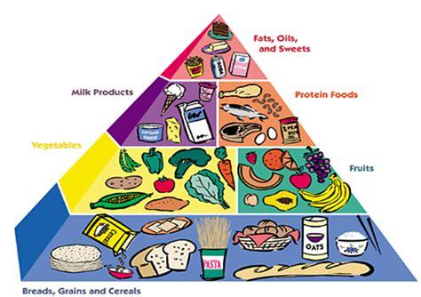 contoh makanan nutrisi ibu hamil contoh sur